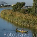 Canoa y cañaverales. Pequeñas poblaciones en los alrededores de RICHARD TOLL. Junto a las orillas del rio Senegal. Senegal
