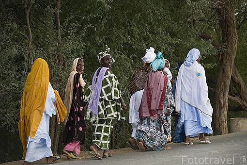 Mujeres vestidas con sus boubous junto a la carretera. Poblacion de RICHARD TOLL. Junto al rio Senegal. Norte de Senegal