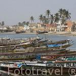 Multitud de embarcaciones de pescadores descansan en un brazo del rio Senegal, junto a la ciudad de SAINT LOUIS. Senegal