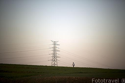 Torre de alta tensión. Ajalvir