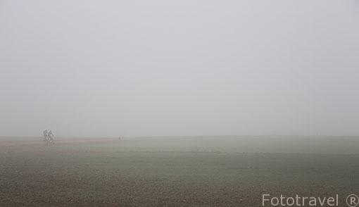 Tierras de cultivo. Ajalvir. Madrid. España