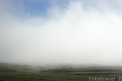 Tierras de cultivo y niebla. Ajalvir. Madrid. España
