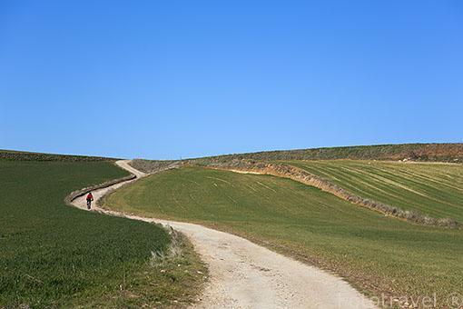 Tierras de cultivo y ciclista en el camino. Ajalvir. Madrid. España