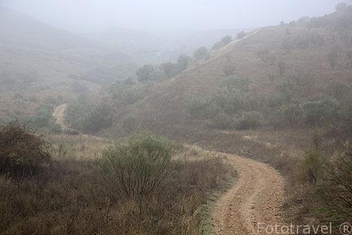 Camino de tierrra entre valles. Ajalvir. Madrid