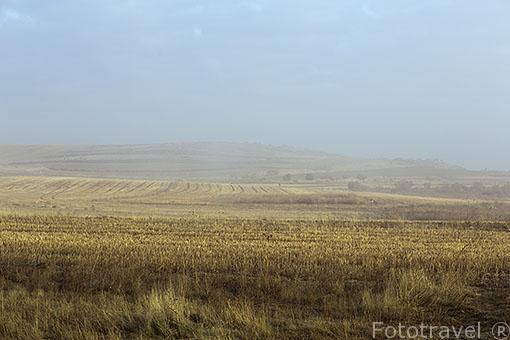 Paracuellos del Jarama y campos